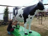 Learn where milk comes from with Milky the Cow