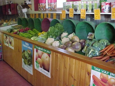 Lots of fresh home grown produce