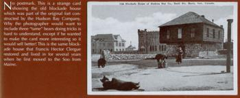 Bears and the Old Blockade House